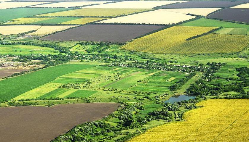În ultimii cinci ani au fost vândute către străini peste 730.000 hectare teren agricol, 422.000 ha fiind exploatate de către aceștia